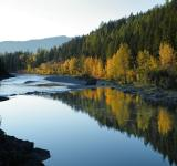Free Photo - Flathead River