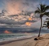 Free Photo - Tropical Beach
