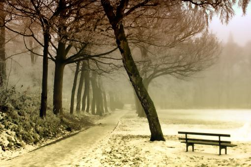 Cold Tranquility - Free Stock Photo