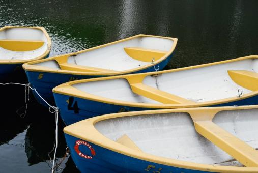 Row Boats - Free Stock Photo