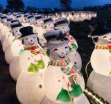 Free Photo - Decorative Snowmen