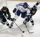 Free Photo - Ice Hockey