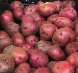 Free Photo - Red Potatoes