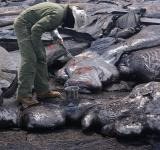 Free Photo - Lava Sampling