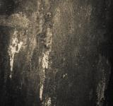 Free Photo - Gritty Metallic Surface