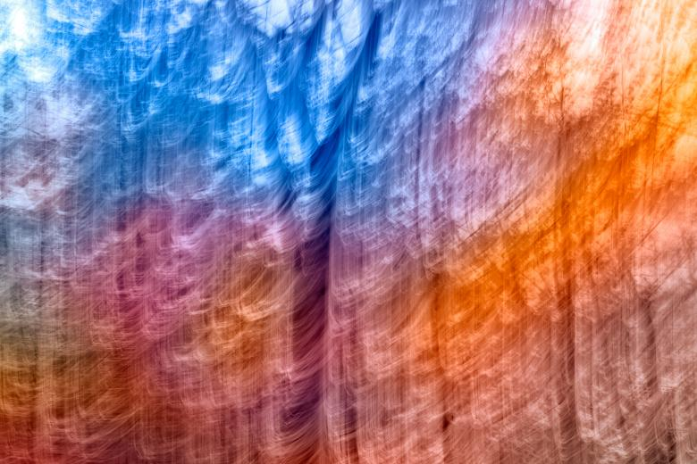 Free Stock Photo of Abstract Rainbow Forest Streaks Created by Nicolas Raymond
