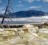 Free Photo - Mammoth Hot Springs