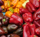 Free Photo - Group of Peppers