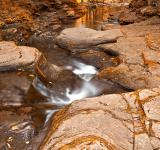 Free Photo - Worlds End Forest Stream - Gold Rapture