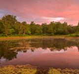Free Photo - Pink Twilight Marsh - HDR