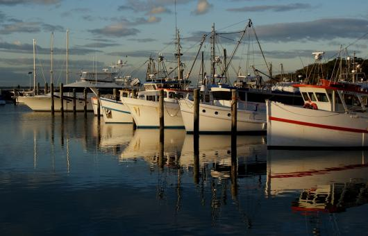 Boats on the Port - Free Stock Photo