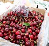 Free Photo - Fresh Cherries