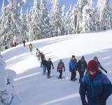 Free Photo - Snowshoe Walk
