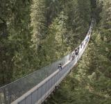 Free Photo - Capilano Suspension Bridge