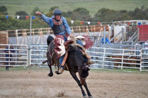 Cowboy Riding the Horse - Free Stock Photo