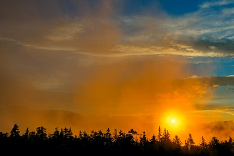 Gold Mist Sunset - HDR - Free Forest Stock Photos