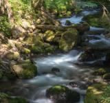 Free Photo - Creek