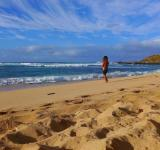 Free Photo - Sandy Beach