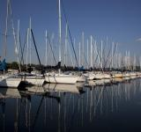 Free Photo - Sailboats in the Lake