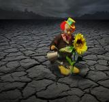 Free Photo - Clown Watering