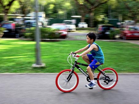 Bicycle Ride - Free Stock Photo