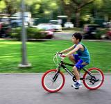 Free Photo - Bicycle Ride