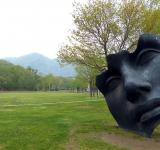 Free Photo - Giant Face
