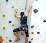 Free Photo - Climbing the Wall