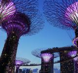Free Photo - Garden By The Bay