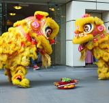 Free Photo - Lion Dance