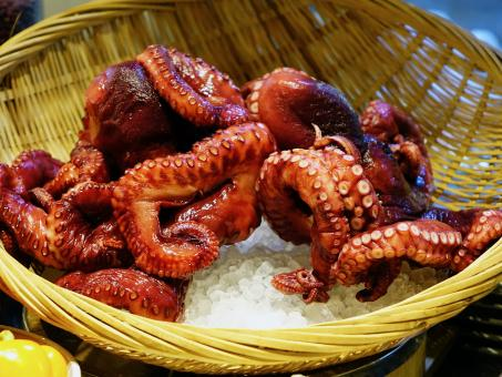 Octopus Dish - Free Stock Photo