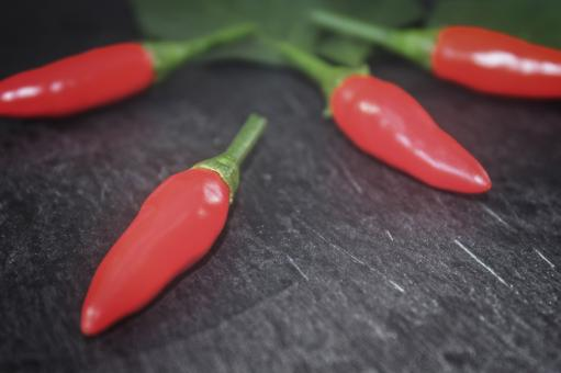 Red Chilli Peppers - Close-Up - Free Stock Photo