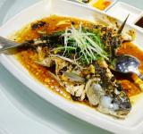 Free Photo - Fish Dish