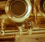 Free Photo - Golden Flute