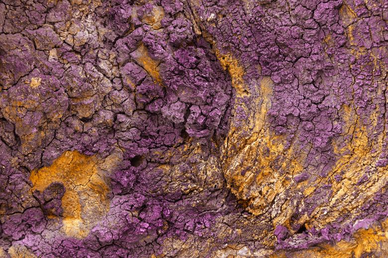 Free Stock Photo of Charred Wood Texture - Purple Gold HDR Created by Nicolas Raymond