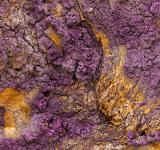 Free Photo - Charred Wood Texture - Purple Gold HDR