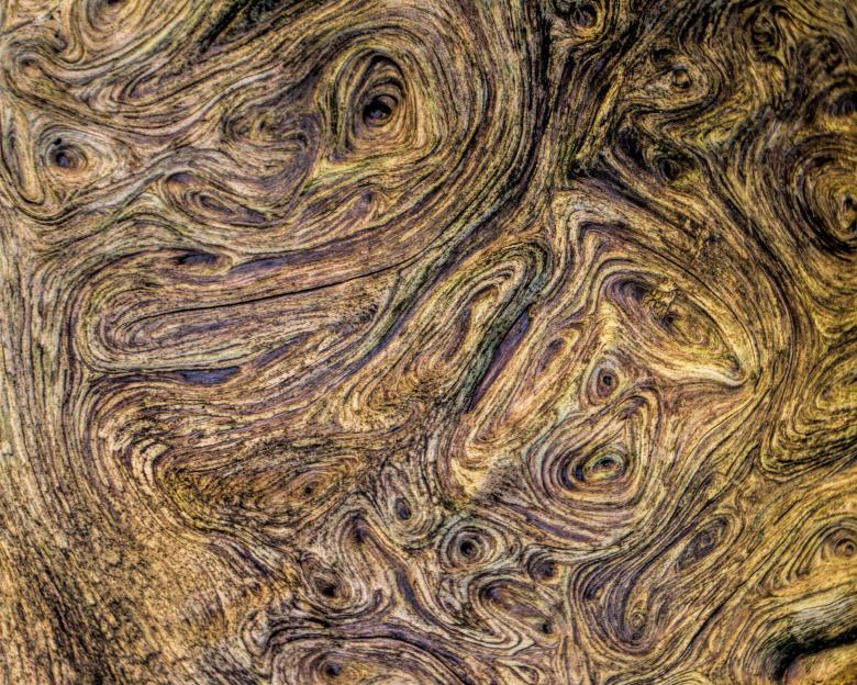 Free Stock Photo of Wood Texture Created by Geoffrey Whiteway