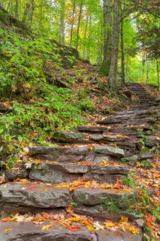 Rustic Autumn Staircase - HDR - Free Stock Photo