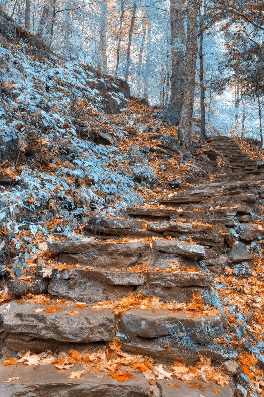 Free Stock Photo of Frosty Fall Staircase - HDR Created by Nicolas Raymond