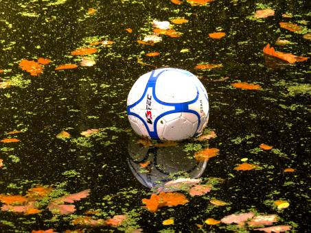 Football in the Pond - Free Stock Photo