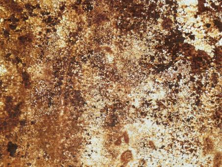 Rust Texture - Free Stock Photo