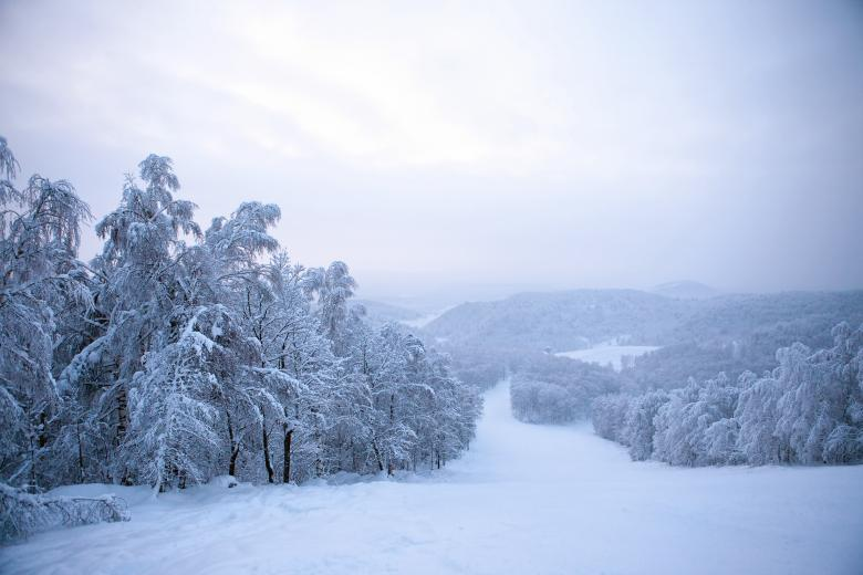 Winter Ski Mountain - Free Forest Stock Photos