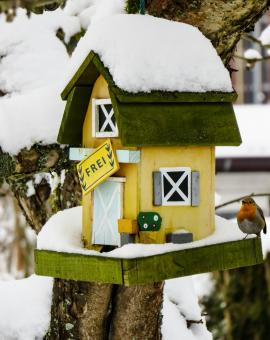 Bird House - Free Stock Photo