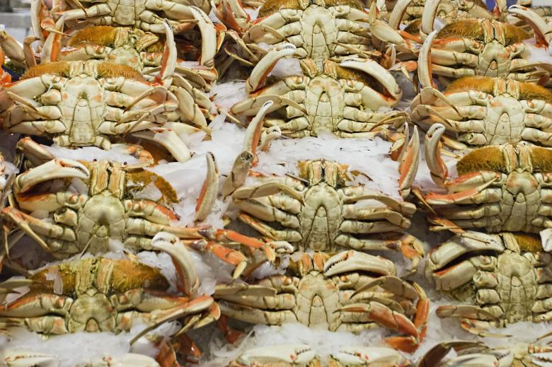Free Stock Photo of Fresh crab Created by Geoffrey Whiteway