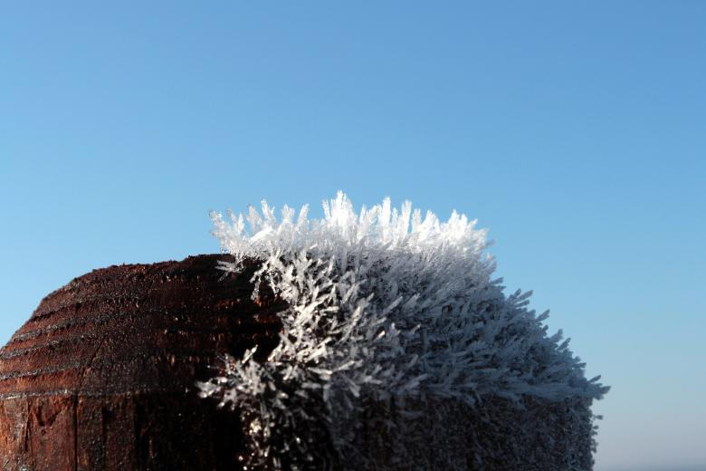 Free Stock Photo of Frost on Wood Pole Created by Pixabay