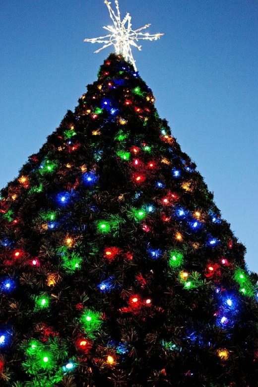 Christmas Tree - Free Christmas Stock Photos
