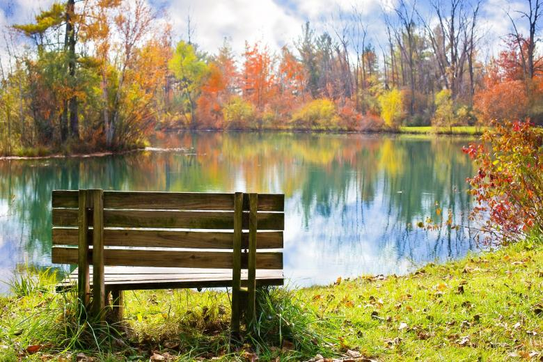 Free Stock Photo of Wooden Bench on the Bank Created by Pixabay