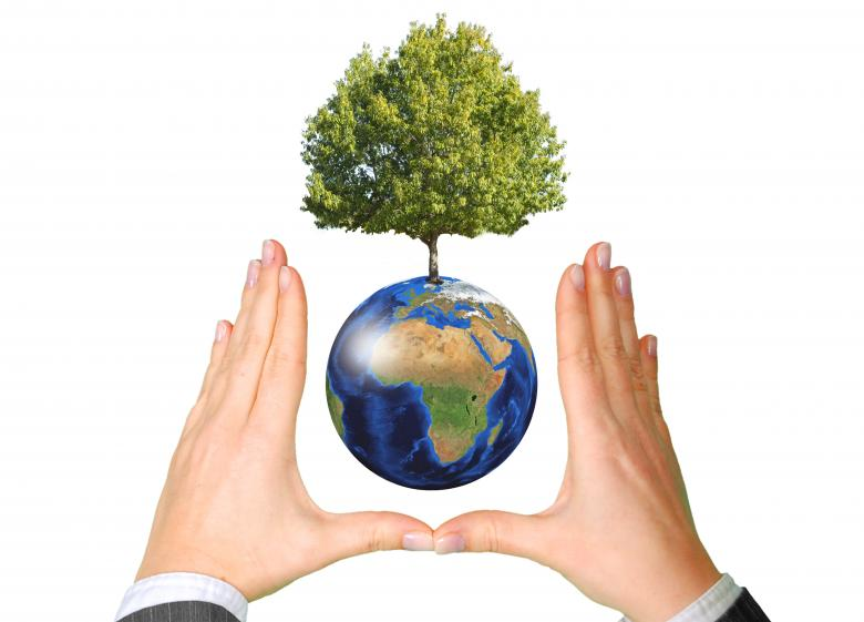 Free Stock Photo of Earth with Tree between Hands - Ecology Concept Created by Jack Moreh