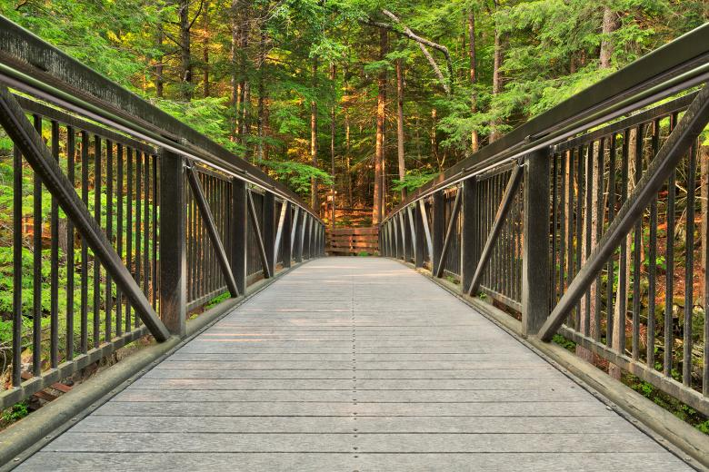 Free Stock Photo of Green Mountain Forest Bridge - HDR Created by Nicolas Raymond
