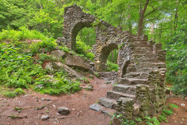 Forest Castle Ruins - HDR Free Photo